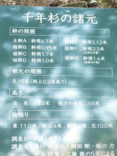 f0219710_975669.jpg