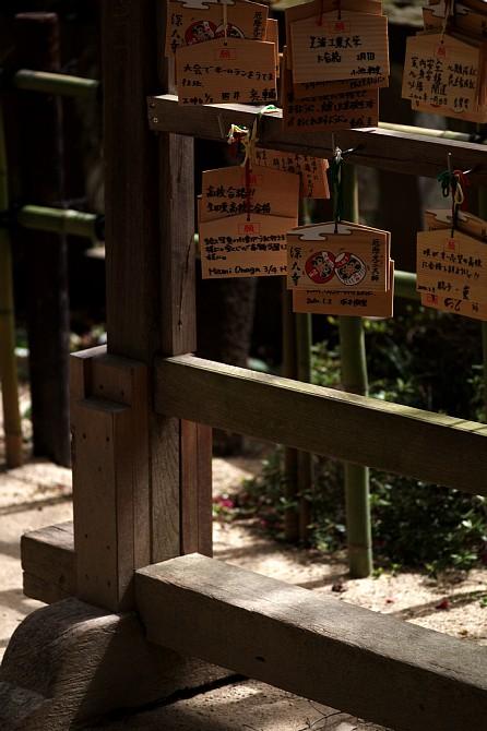 2010-3-23 早春の深大寺オフ_c0136330_20494784.jpg