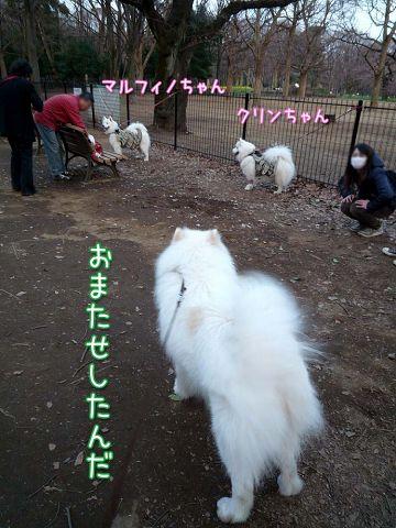 きのうのおっきな公園(完全版)_c0062832_17261515.jpg