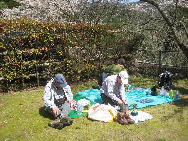 春、爛漫です^^  ゲンカイツツジと虎尾桜_e0164643_225718.jpg