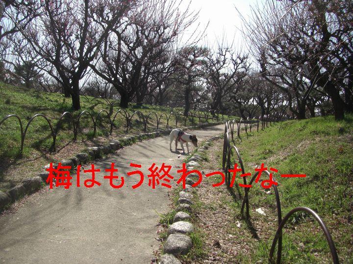 f0053952_13515116.jpg