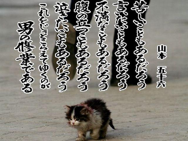 c0169572_022067.jpg