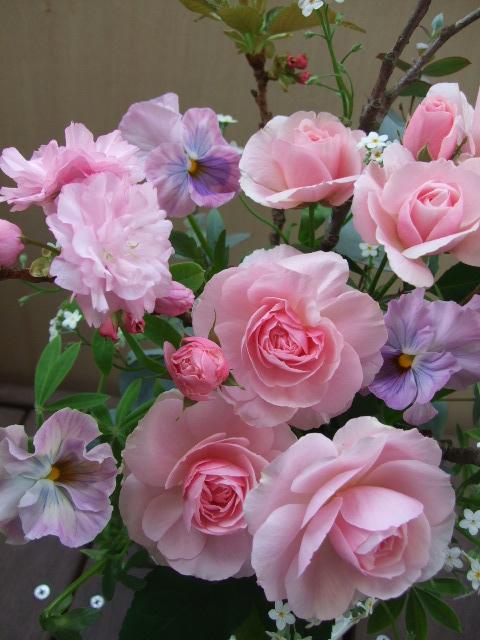 オークリーフ(八重桜と薔薇・てまりのアレンジメント)_f0049672_1231556.jpg