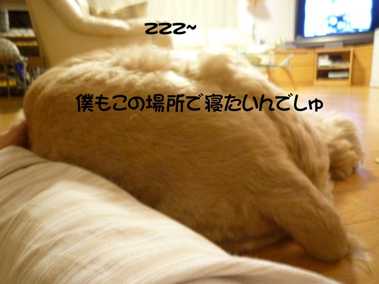 f0218182_11444415.jpg