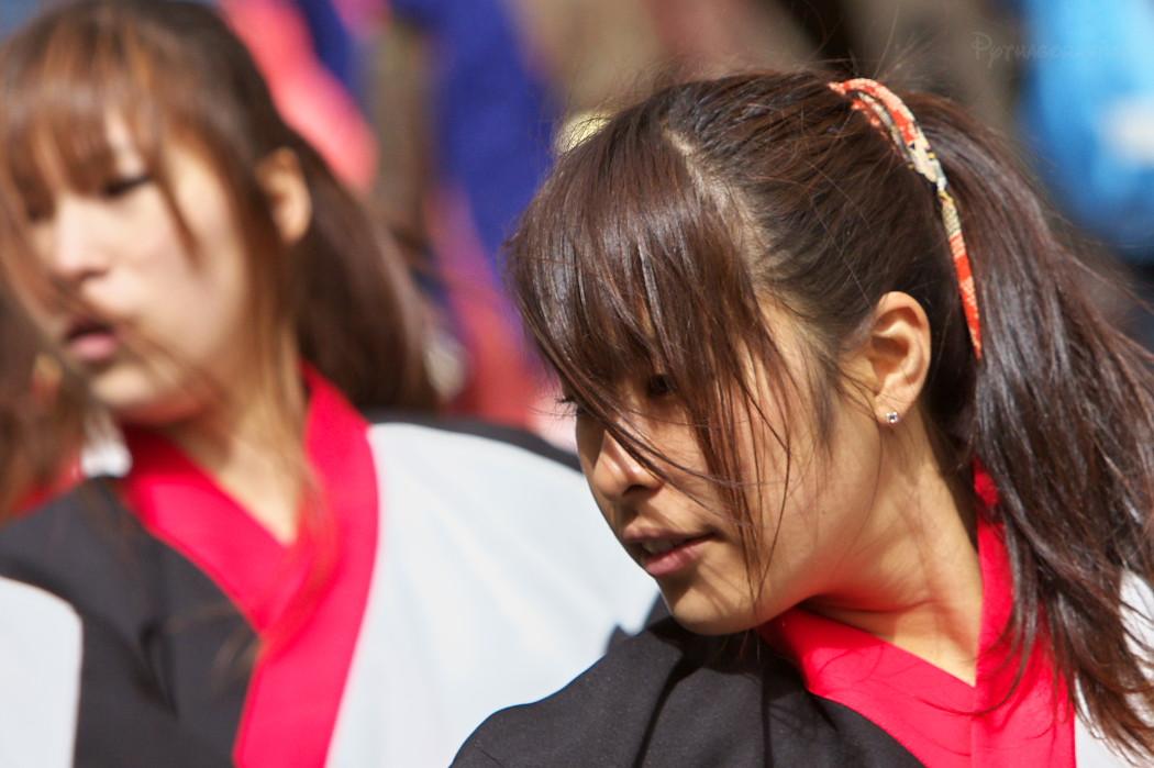 がんこ祭り2010:その1_c0187584_22325122.jpg