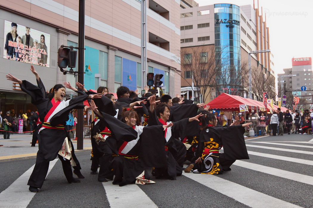 がんこ祭り2010:その1_c0187584_2255483.jpg