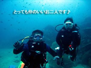 サメはどこへ?その代わりマクロ三冠王♪_f0144385_19313177.jpg
