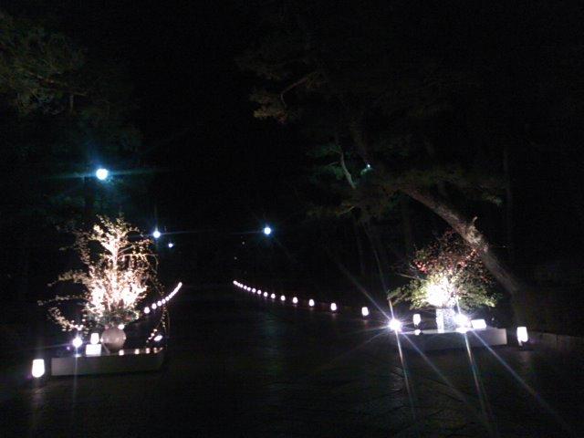 夜の京都  花灯路_c0100195_981217.jpg