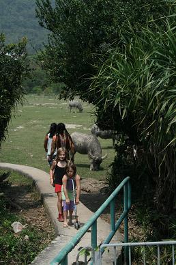 ランタオ島で水牛に会う♪_d0088196_19192382.jpg