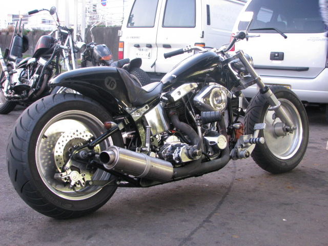 SHOVELHEAD ON SOFTAIL_a0165898_16375.jpg