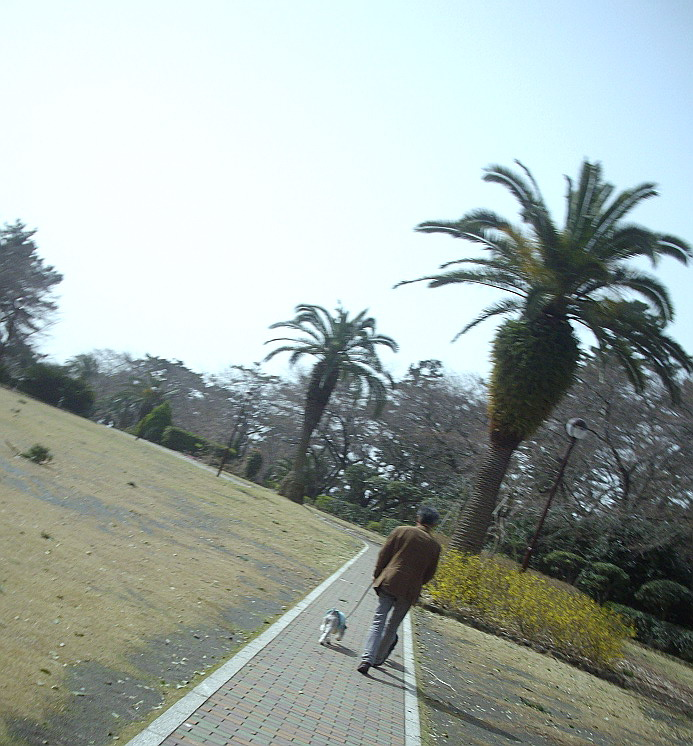 c0138198_1461396.jpg