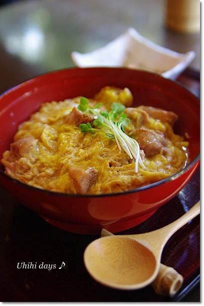 東京軍鶏(しゃも)の親子丼_f0179404_2122192.jpg
