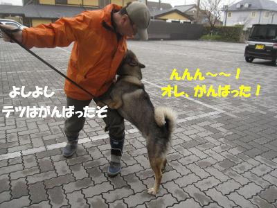 f0143123_20121593.jpg