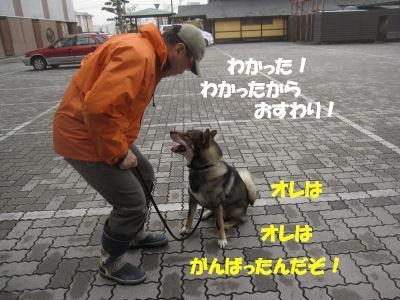f0143123_20125676.jpg