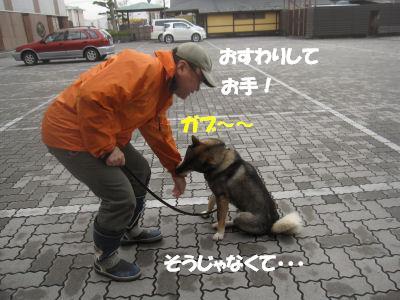 f0143123_2013205.jpg