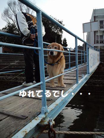 b0127531_1318431.jpg