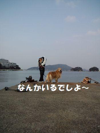 b0127531_13251447.jpg