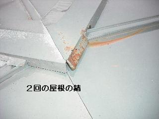 f0031037_2056549.jpg