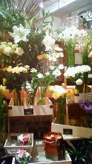 お花屋さんで店番_a0153945_8503541.jpg