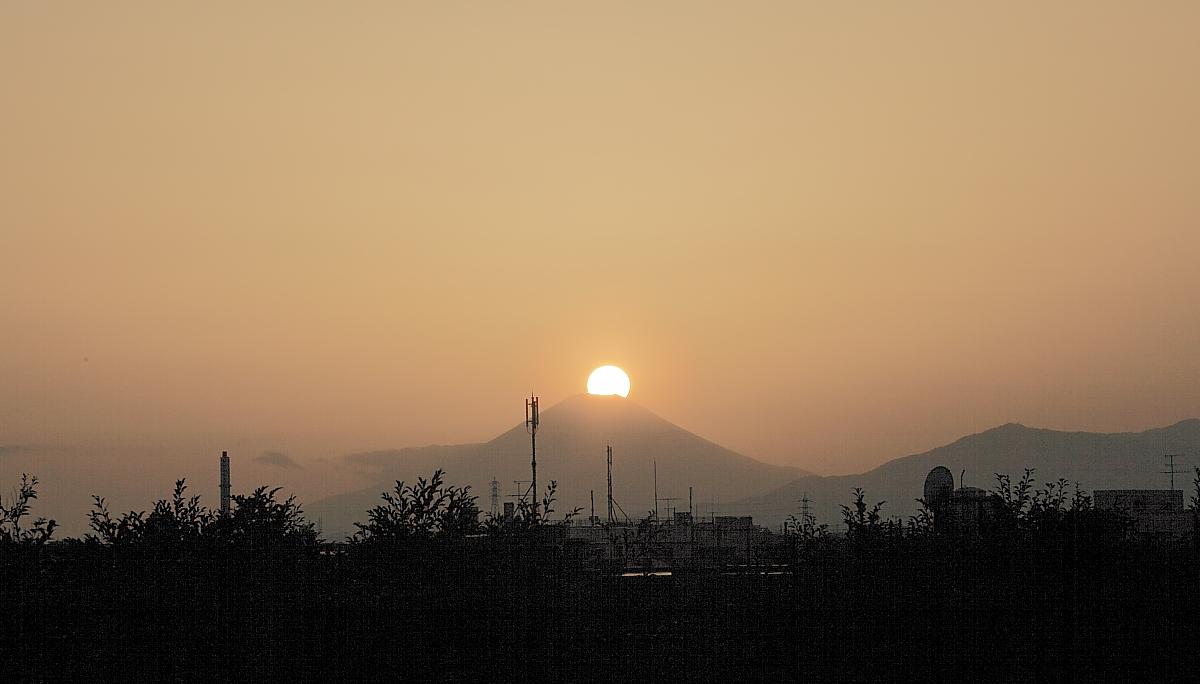 ダイヤモンド富士・野毛山公園_a0150260_1712585.jpg