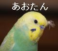 f0196665_94398.jpg