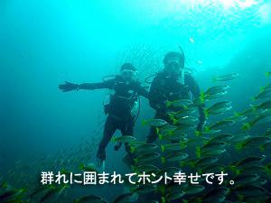 4泊5日シミランクルーズ with マリンクエスト号_f0144385_10514484.jpg