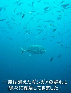 4泊5日シミランクルーズ with マリンクエスト号_f0144385_10521266.jpg