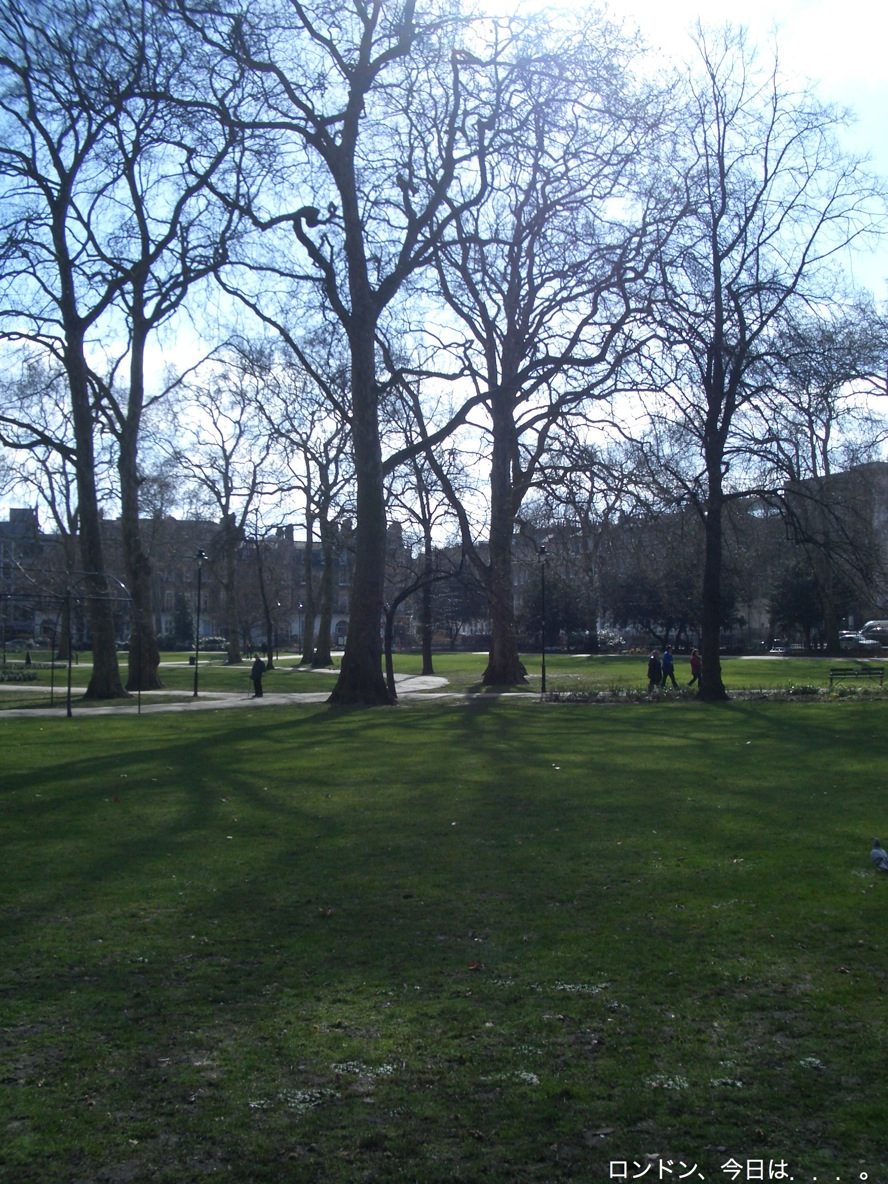 Squares in London_a0137487_2031143.jpg
