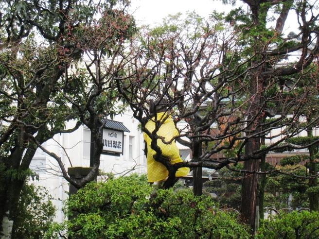 山田別荘でダンス!_f0048597_22521830.jpg