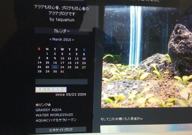 c0214310_15431431.jpg