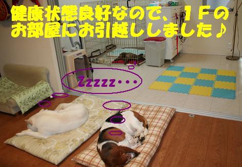 f0121712_18211959.jpg