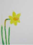 春だ!・大人クラス_f0211514_17494448.jpg