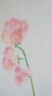 春だ!・大人クラス_f0211514_17531794.jpg