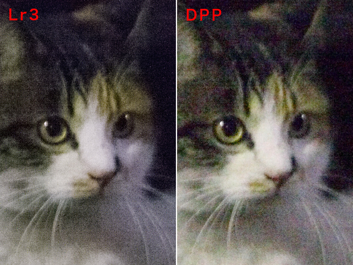 Lightroom 3 と DPP のノイズリダクション比較_f0077521_14361345.jpg