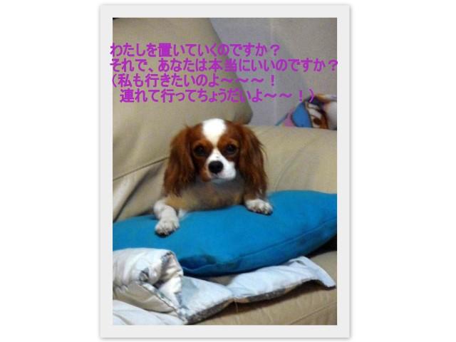 f0214121_21163355.jpg