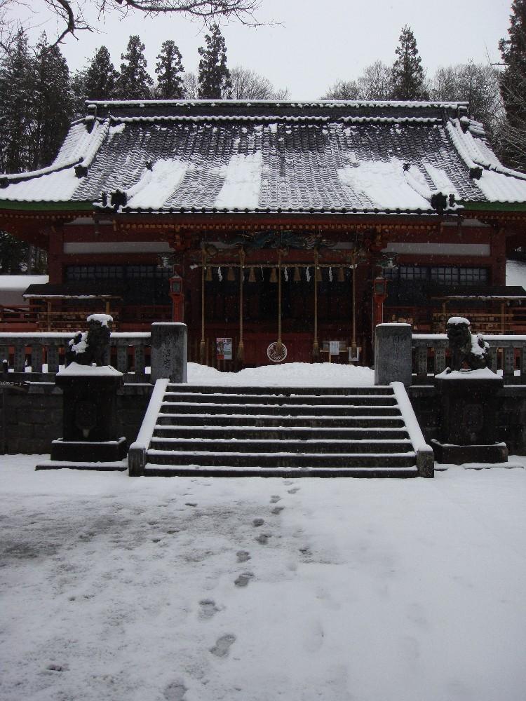 朝から一日雪降り_c0111229_18215294.jpg