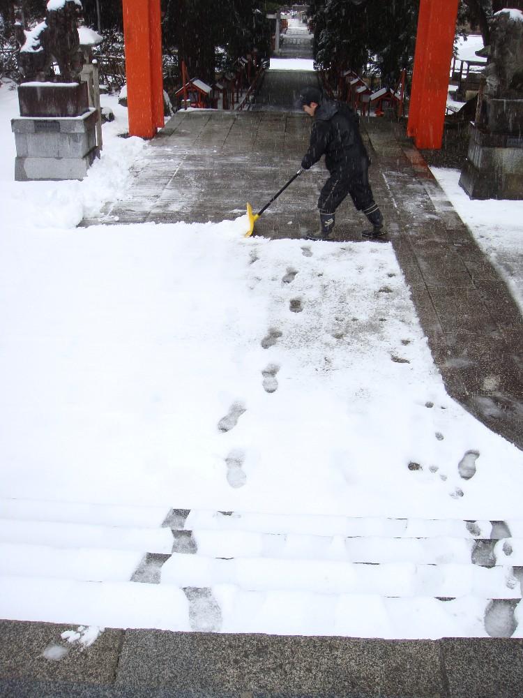 朝から一日雪降り_c0111229_18221168.jpg