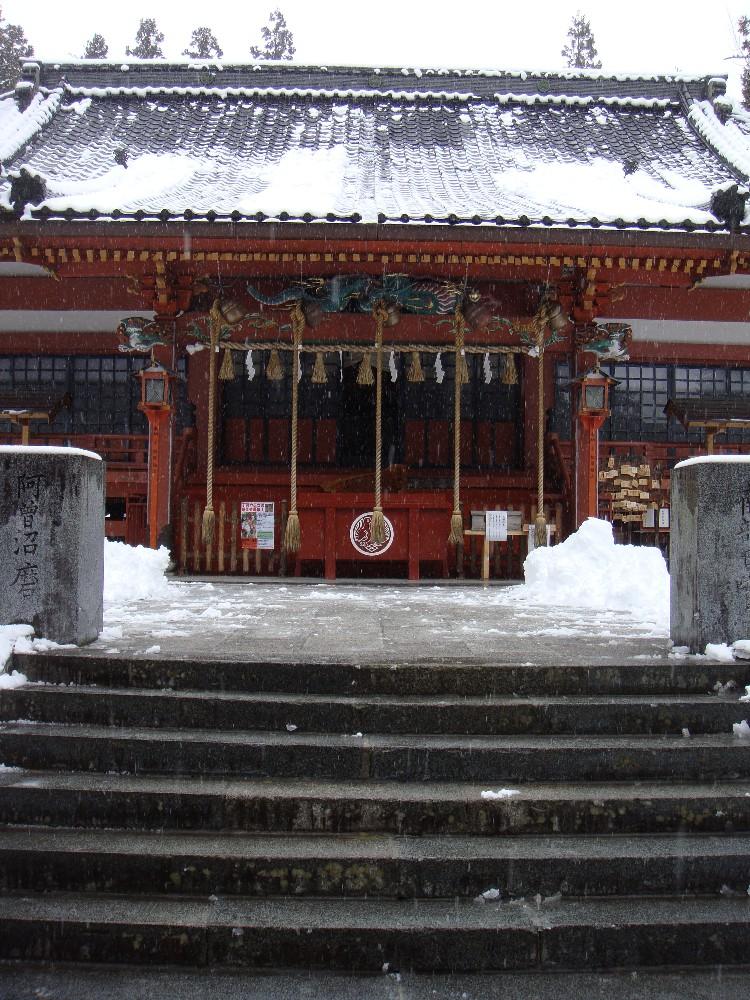 朝から一日雪降り_c0111229_18223026.jpg