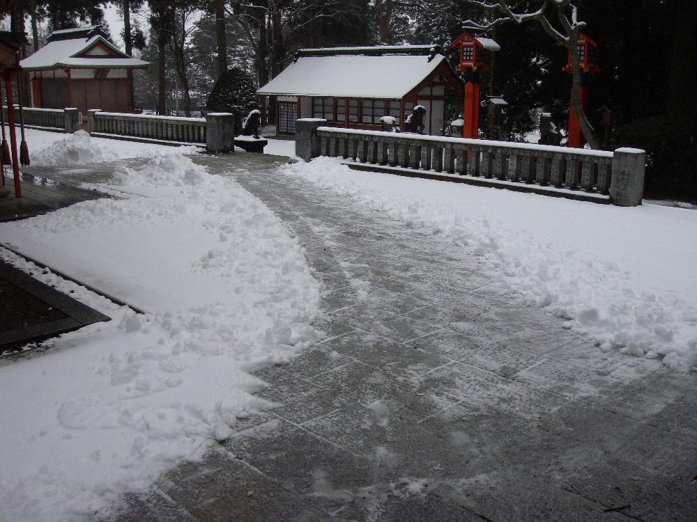 朝から一日雪降り_c0111229_18224085.jpg