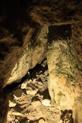 世界遺産 石見銀山をベロタクシーで周る_d0055236_237454.jpg