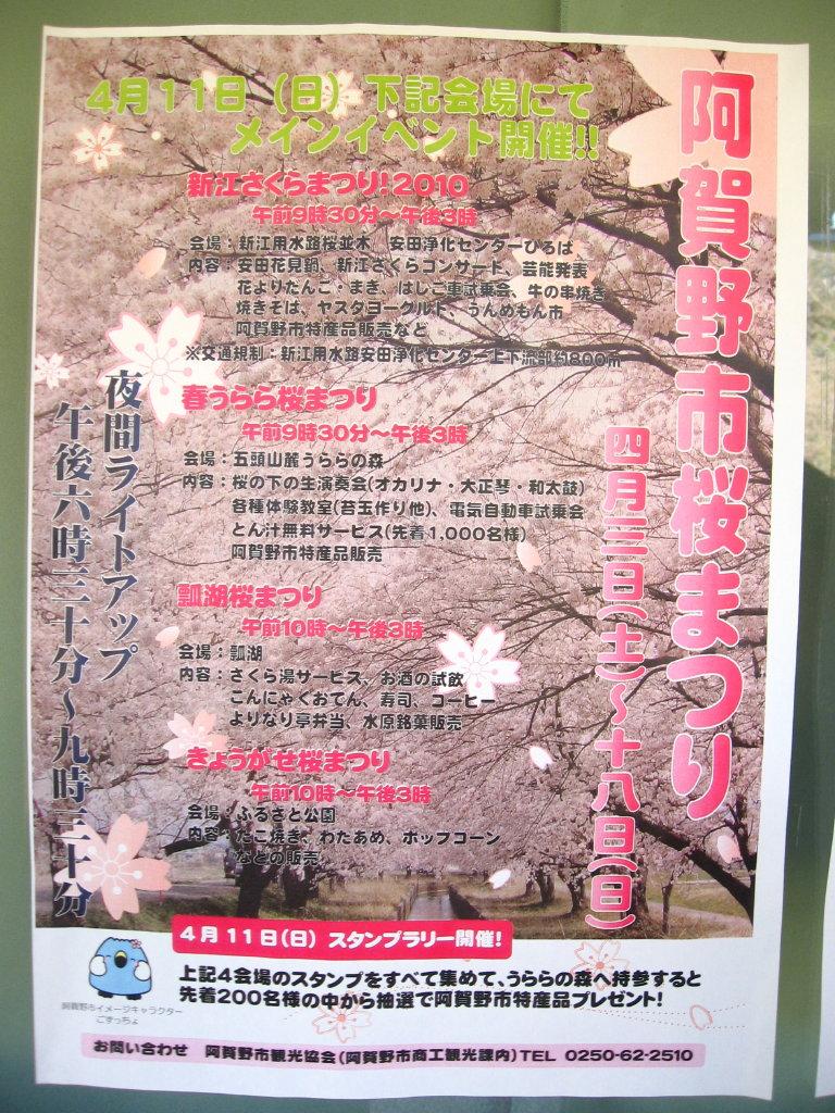 桜まつり_f0182936_15570.jpg