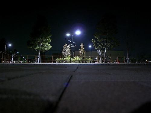 夜の散歩_d0113340_22335893.jpg