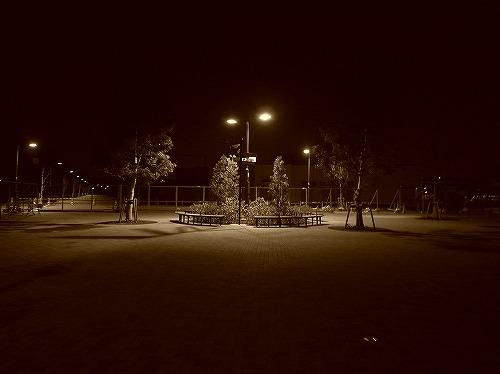 夜の散歩_d0113340_2234736.jpg