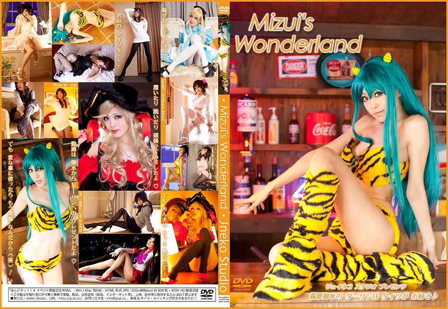 ■ 「あしピタっ!!4」開催記念新作 DVD-ROM写真集のご案内_b0073141_20472434.jpg