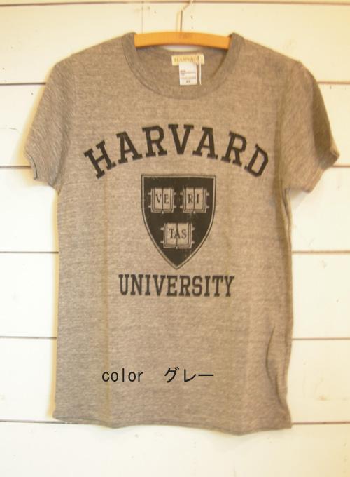 セムインターナショナル 英字半袖Tシャツ_a0130646_18541126.jpg