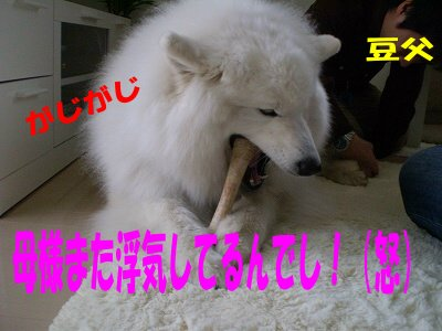 a0166954_17525081.jpg