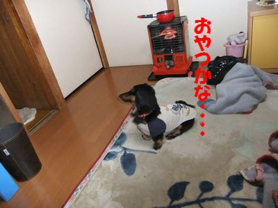 c0151866_20112670.jpg