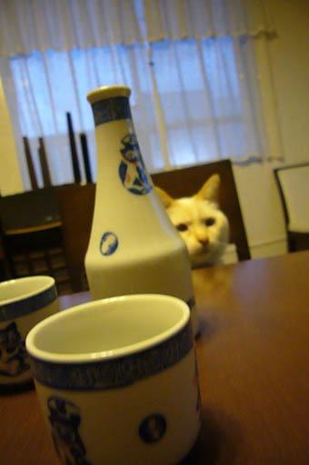 sake._c0153966_2142038.jpg