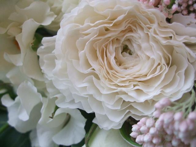 オークリーフ(オードリーとラナンキュラスの花束)_f0049672_1701068.jpg