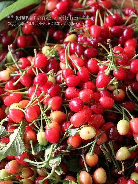 収穫 *:...。.(´∀`人) ☆今日のお弁当♪_c0139375_12451360.jpg